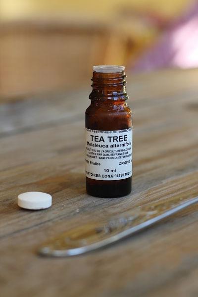 Atelier aroma tea tree