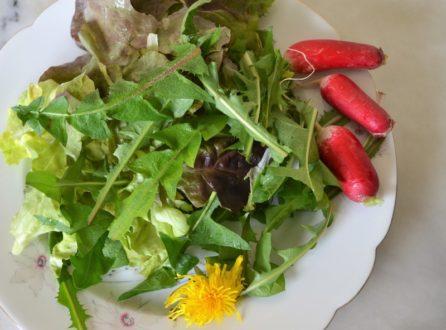conseils aroma et naturo de printemps allergie